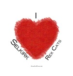 I (heart) Selkirk Rex Cats