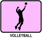Mens Volleyball (pink)