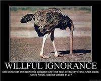 Willful Ignorance