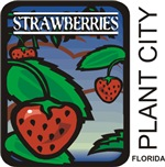 Plant City Strawberries
