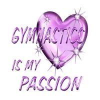 <b>GYMNASTICS IS MY PASSION</b>