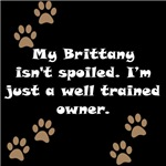 Well Trained Brittany Owner