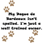 Well Trained Dogue de Bordeaux Owner