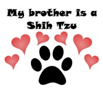My Brother Is A Shih Tzu