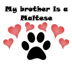 My Brother Is A Maltese