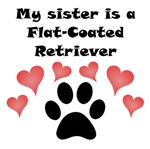 My Sister Is A Flat-Coated Retriever