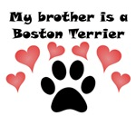 My Brother Is A Boston Terrier
