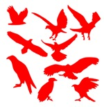 Red Eagles Silhouette