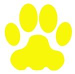Yellow Big Cat Paw Print