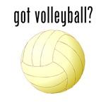 got volleyball?
