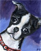 BOSTON pup portrait Design