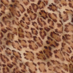 Jaguar Wild!