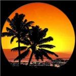 tropic sun