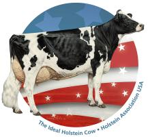 Red, White and Blue Holstein Pride
