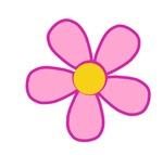 Pink & Yellow Flower