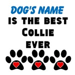 Best Collie Ever