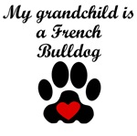 French Bulldog Grandchild