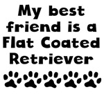 My Best Friend Is A Flat-Coated Retriever