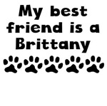 My Best Friend Is A Brittany