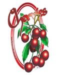 NEW!  Cherries