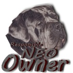 Responsible Neo Owner