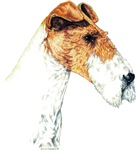 Fantastic Fox Terrier Dog Products & Gifts