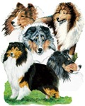 Super Shetland Sheepdog Sheltie Dog Products Gifts