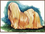 Lhasa Apso Dog Painting Designs
