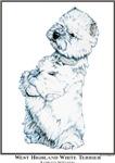 Sitting West Highland White Terrier Westie Gifts