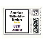 American Staffordshire Terrier Best of Breeds Gift