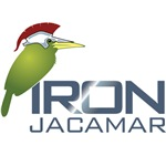 Iron Jacamar