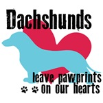 Dachshunds Leave Pawprints On Our Hearts