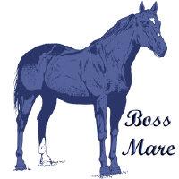 Quarter Horse Boss Mare