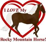 I LOVE My Rocky Mountain Horse!