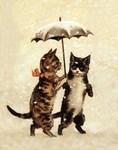 Two Cats, Umbrella, Vintage