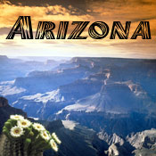 Arizona Designs
