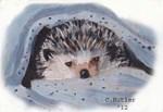 Hedgehog II