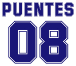 Puentes 08