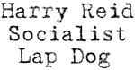 Harry Reid Socialist Lap Dog
