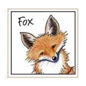 Fox Designs