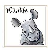 Wildlife Cartoons