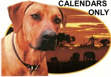 JUBA LEE MONTHLY CALENDARS & JUBA LEE LOGO