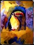 Toucan, Wildlife art,