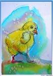 Yellow chick, art