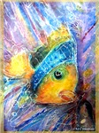 Fish, bright, tropical,