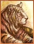 Tigers! Wildlife art!