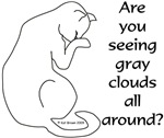 Gray Clouds...