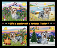 FOUR SEASONS WITH A YORKIE
