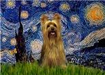 STARRY NIGHT<br>& Silky Terrier