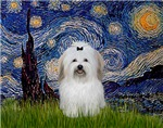 STARRY NIGHT<br> & Coton de Tulear #2